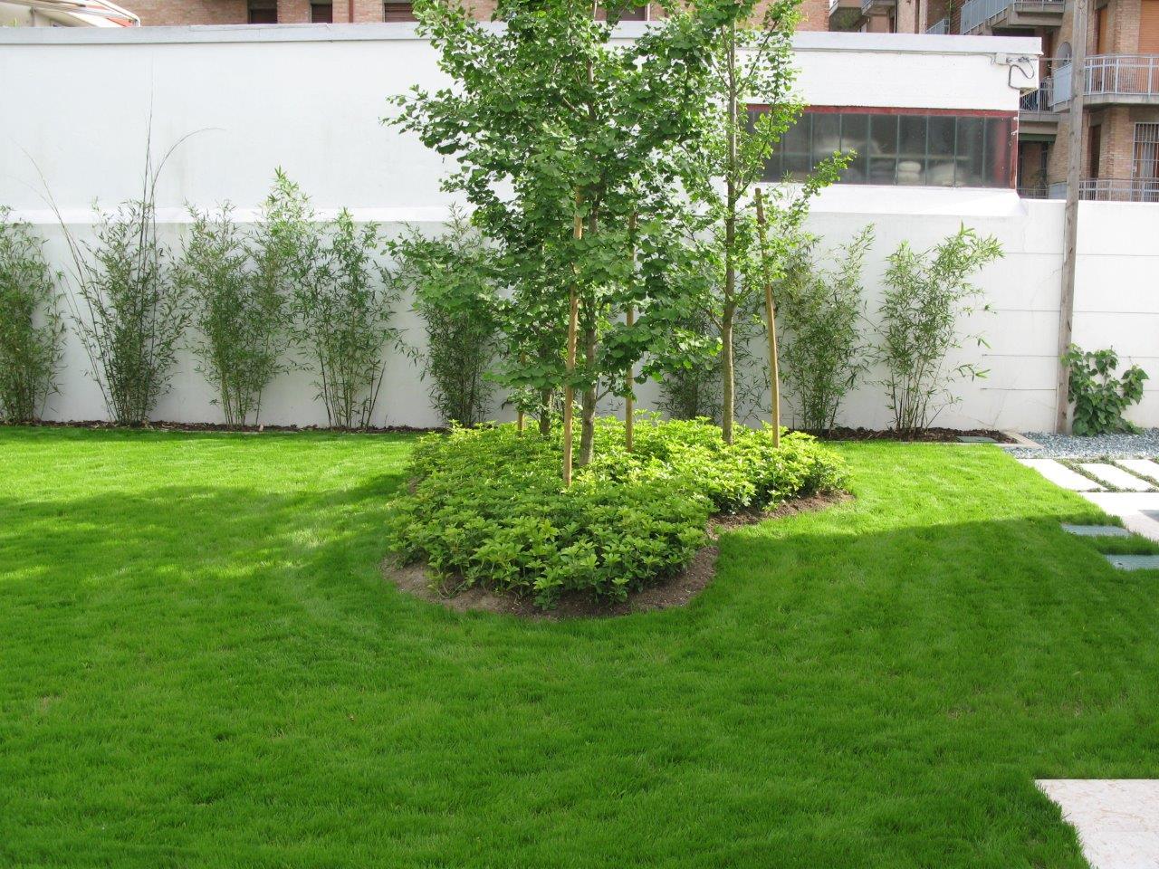 Giardini Moderni E Contemporanei : Giardini moderni e contemporanei idee e consigli per un giardini