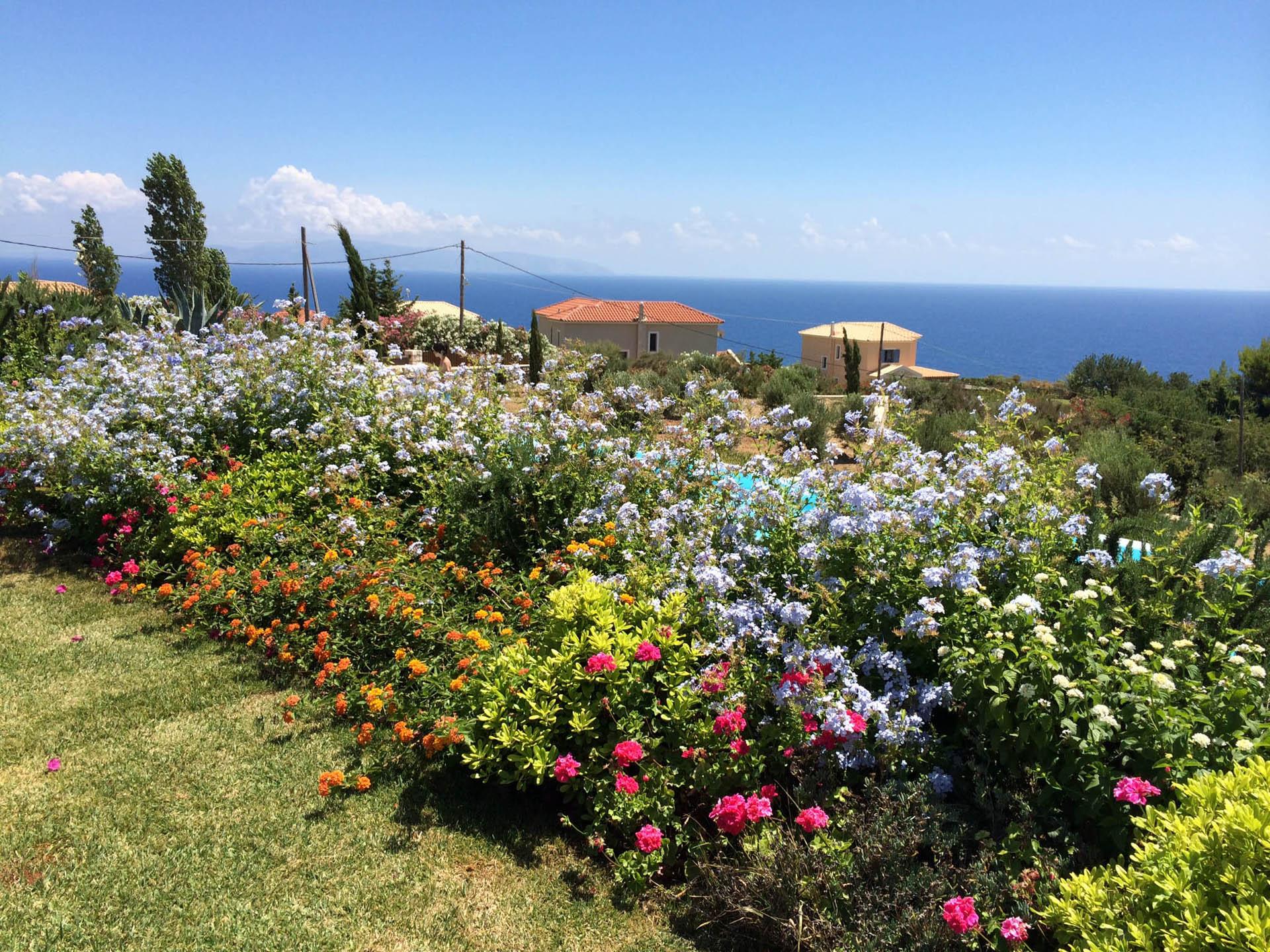 Bellamoli giardini giardini mediterranei - Giardini mediterranei ...